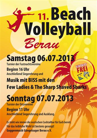 Plakat volleyball 2013 web Small